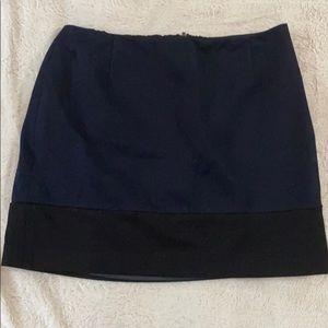 Tahari Mini Skirt